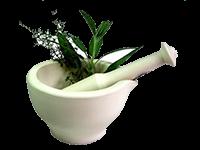 Бальзамы из растений
